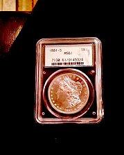 Buy MS -61 Morgan Dollar  1881 S