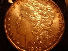 Buy 1902 o Morgan Silver Dollar