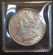 Buy 1886 Morgan Dollar