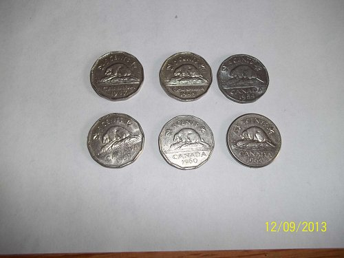 Collection of mint 5 cents coins from Canada