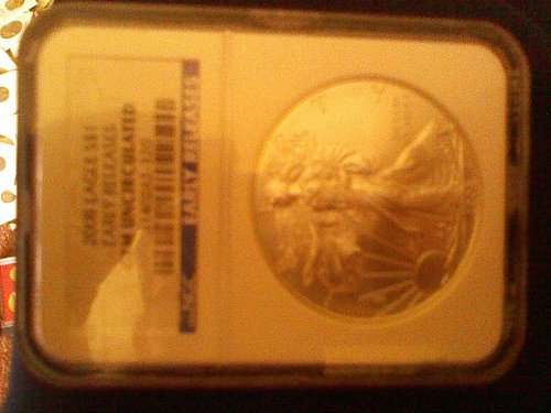2008 Gem Uncirculated  Eagle.