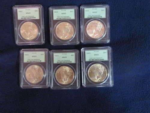 1922-P Peace dollar MS 63 (6 coins)