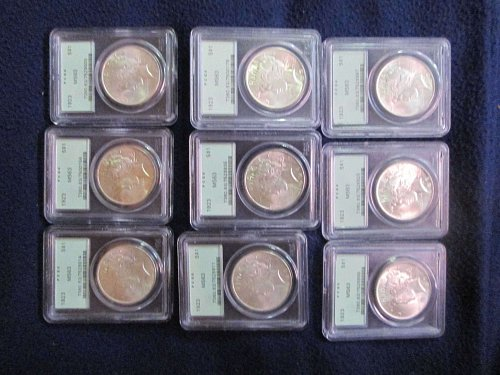 1923-P Peace MS 63 (9 coins)