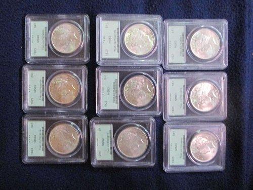 1923-P Peace MS 63 (9 coins)