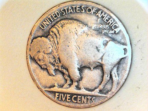 1919 P Buffalo Nickel---VG-Fine