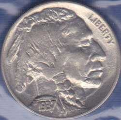 Buffalo Nickel 1937P