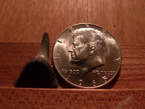 1965 40% Silver Kennedy Half Dolar