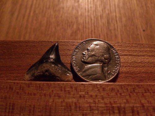 1969 D Jefferson Nickel #2