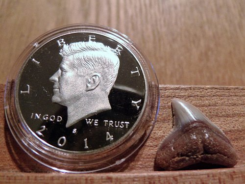 2014 Kennedy Half Dollar Clad Proof