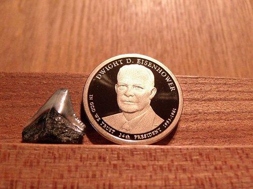 2015 S Dwight D Eisenhower