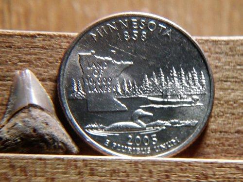 2005 P Minnesota