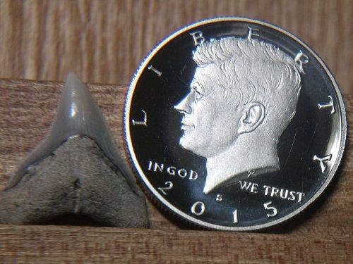2015 S Kenedy Half Dollar Clad Proof