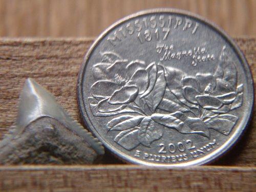 2002 Mississippi P