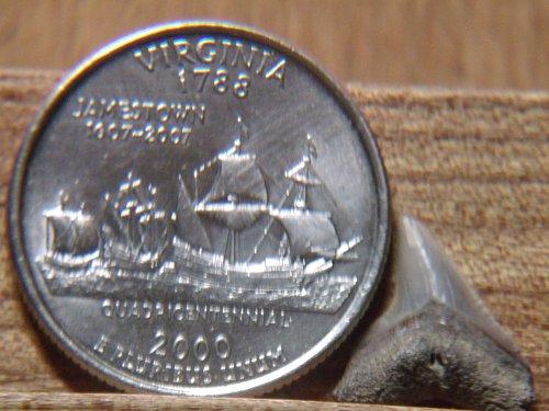 2000 P Virginia