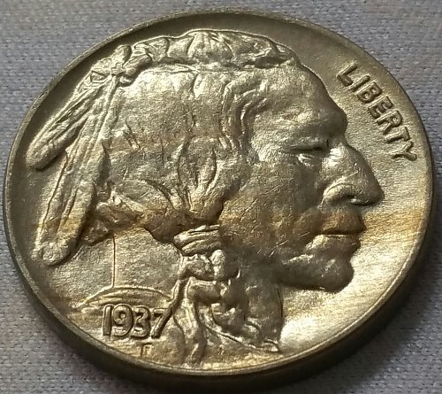1937 Buffalo Nickel ~ MS 63