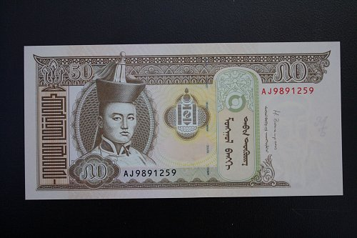 2013 MONGOLIA FIFTY TUGRIK BANKNOTE