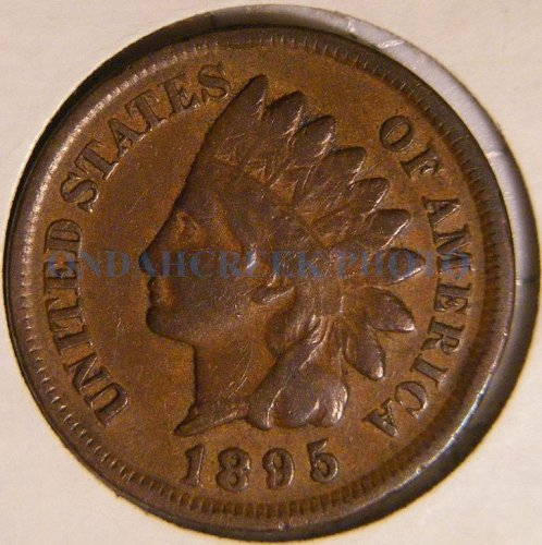 1895 Indian Head Cent Fine