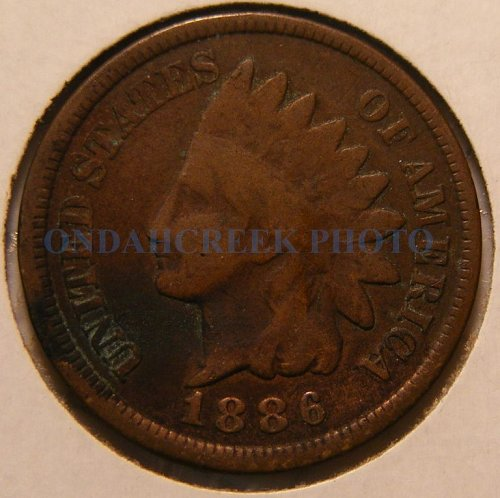 1886 Indian Head Cent Horse Head Reverse