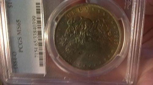 1884-O Morgan Dollar PCGS MS-65