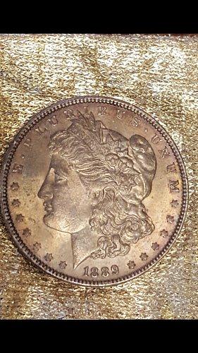 Beautifully toned 1889 Morgan Dollar