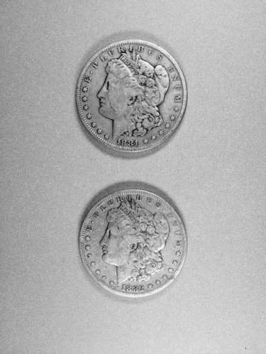 Lot 5:  Two coin set of Morgan dollars, 1881&1882-s.  Very nice coins.