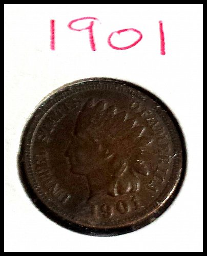 1901 P Indian Head Cent Small Cent