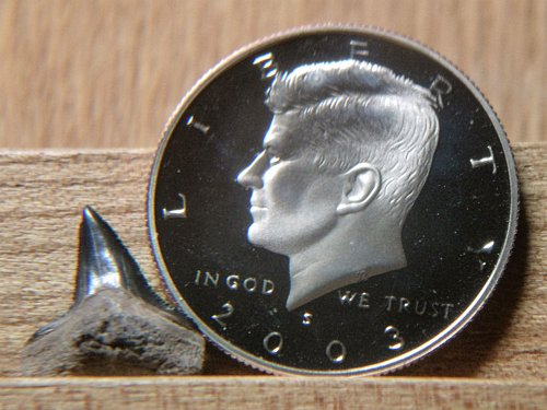 2003 S Clad Proof Kennedy Half Dollar