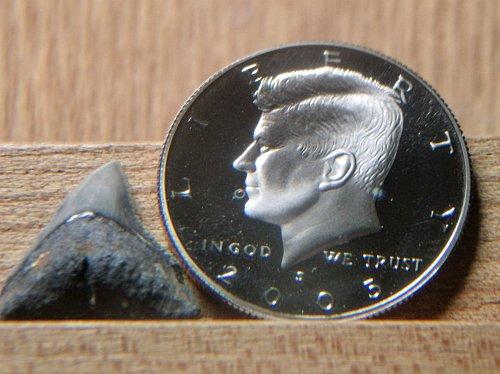 2005 S Clad Proof Kennedy Half Dollar