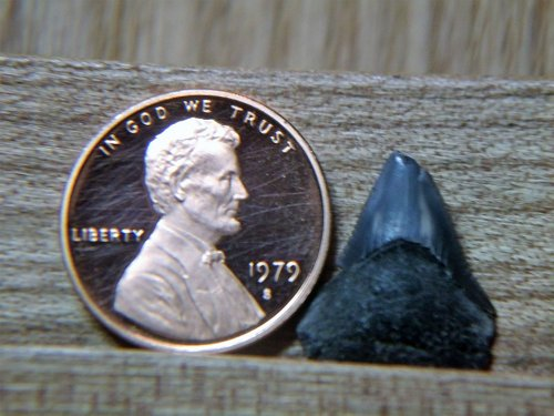 1979 S Proof Lincoln Penny