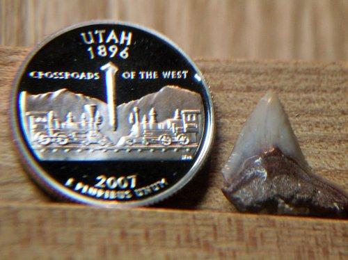 2007 S Proof Utah