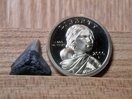 2000 S Proof Sacagawea