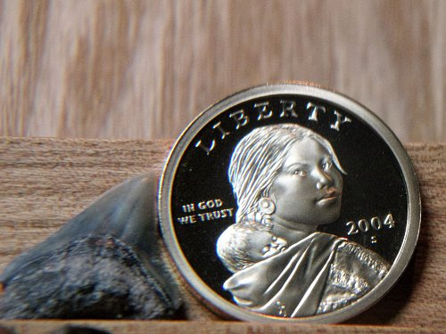2004 S Proof Sacagawea