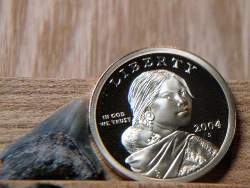 2004 S Proof Sacagawea