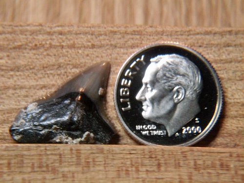 2000 S Proof Roosevelt Dime