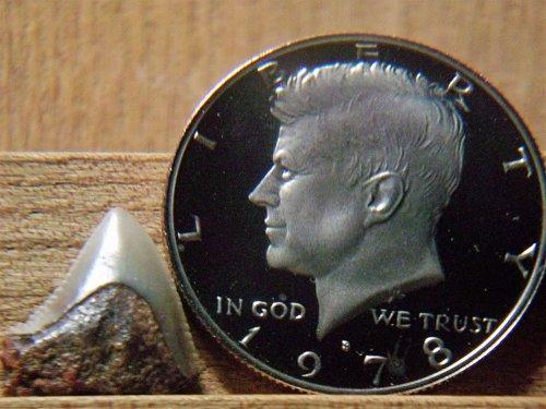 1978 S Clad Proof Kennedy Half Dollar #2