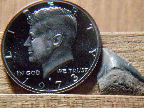 1973 S Clad Proof Kennedy Half Dollar