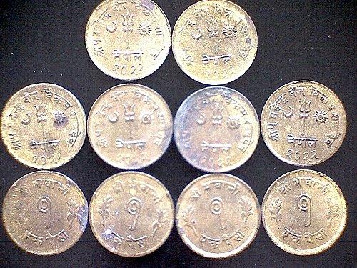 VS-2022 1965 NEPAL SHAH DYNASTY ONE PAISA  (10 COIN LOT)