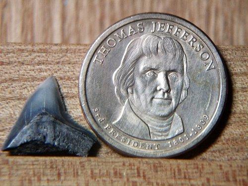 2007 P Thomas Jefferson #2