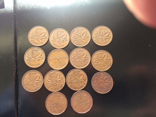 14 CANADIAN PENNIES