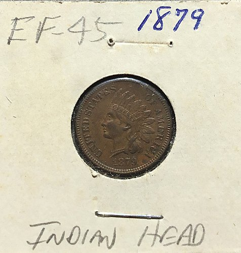 1879 Indian Head Penny   /   WM-71