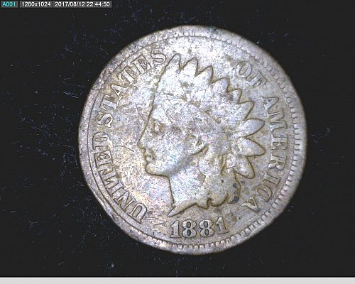 1881 P INDIAN HEAD CENT