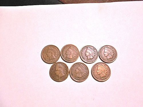 1896 Indian Head Cent and 6 other Indian Head Cents
