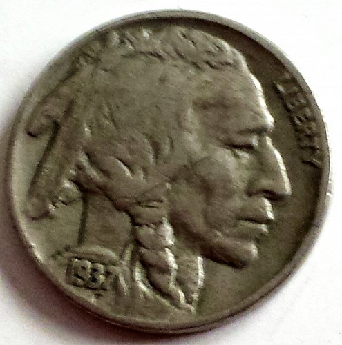 1937-P Buffalo Indian Nickel