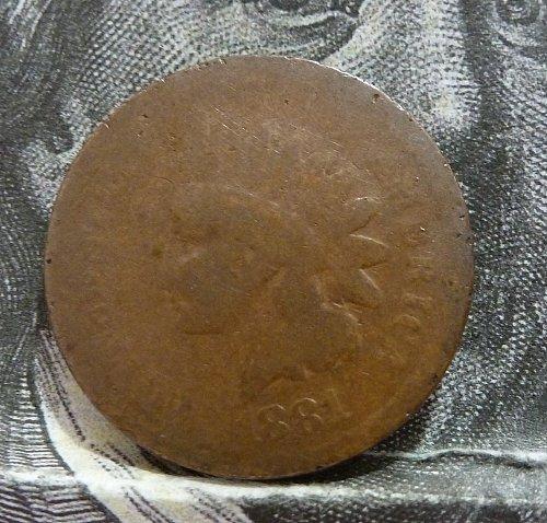 1881 Indian Cent Grades AG FILLER GRADE ( 8055 )