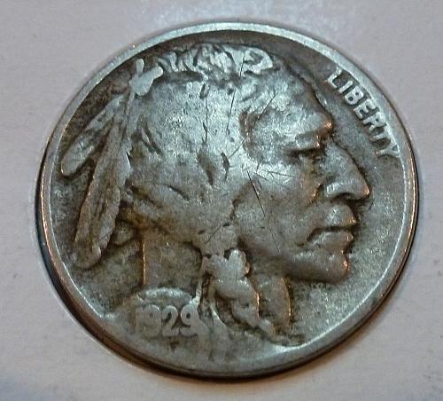 1929 P Fine Grade Buffalo Nickel  ( 4165 )