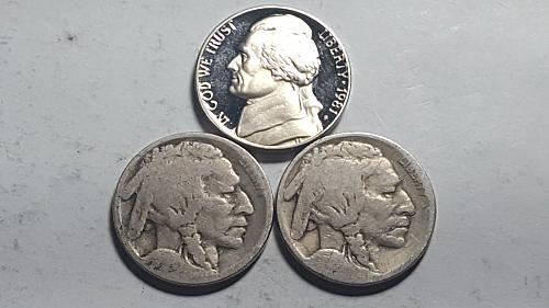 1981 S Proof Lincoln Cent Type1 Filled S Deep Cameo + (2) Dateless Buffalo Nicke