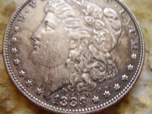 1883 P Morgan