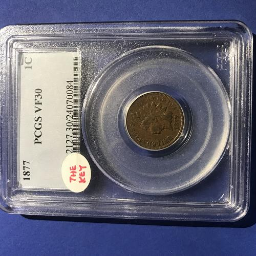 certified PCGS 1877 indian head cent