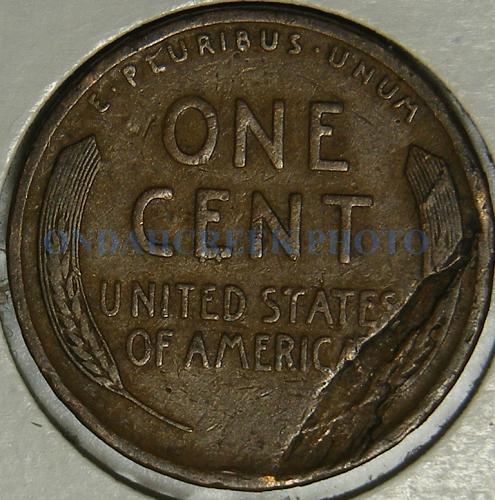 1909 Lincoln Cent Lamination Peel Error on Reverse