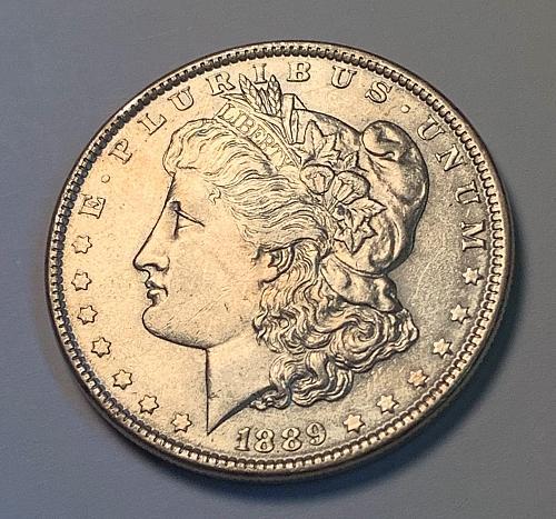 1889 Morgan Silver Dollar [MDL 166]